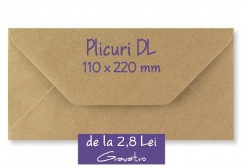 Plicuri pentru Invitatii Nunta DL 110 x 220 mm