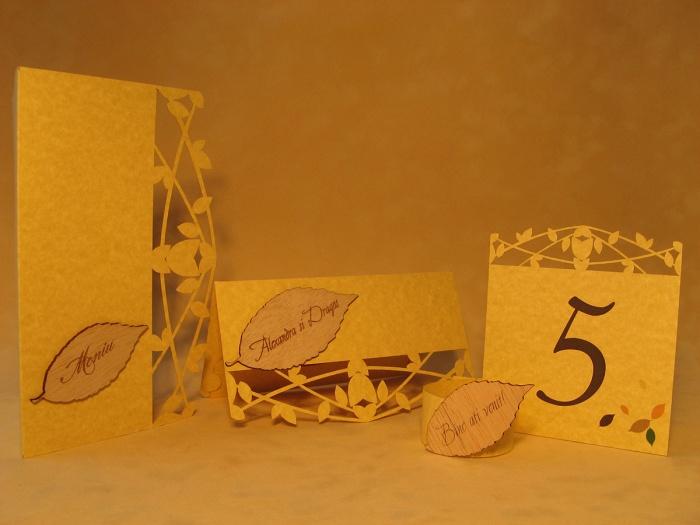 Set aranjament rustic pentru nunta