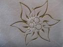 Floare de colt - detaliu gravura